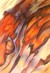Alpine Bark Study 1 (42 x 62 cm)