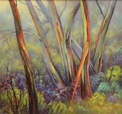 Colourful Gums of Mount Baw Baw, Victoria (30 x 27cm)