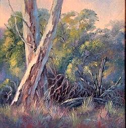 Soft Early Morning Light, Werribee, Victoria (12 x 12cm)